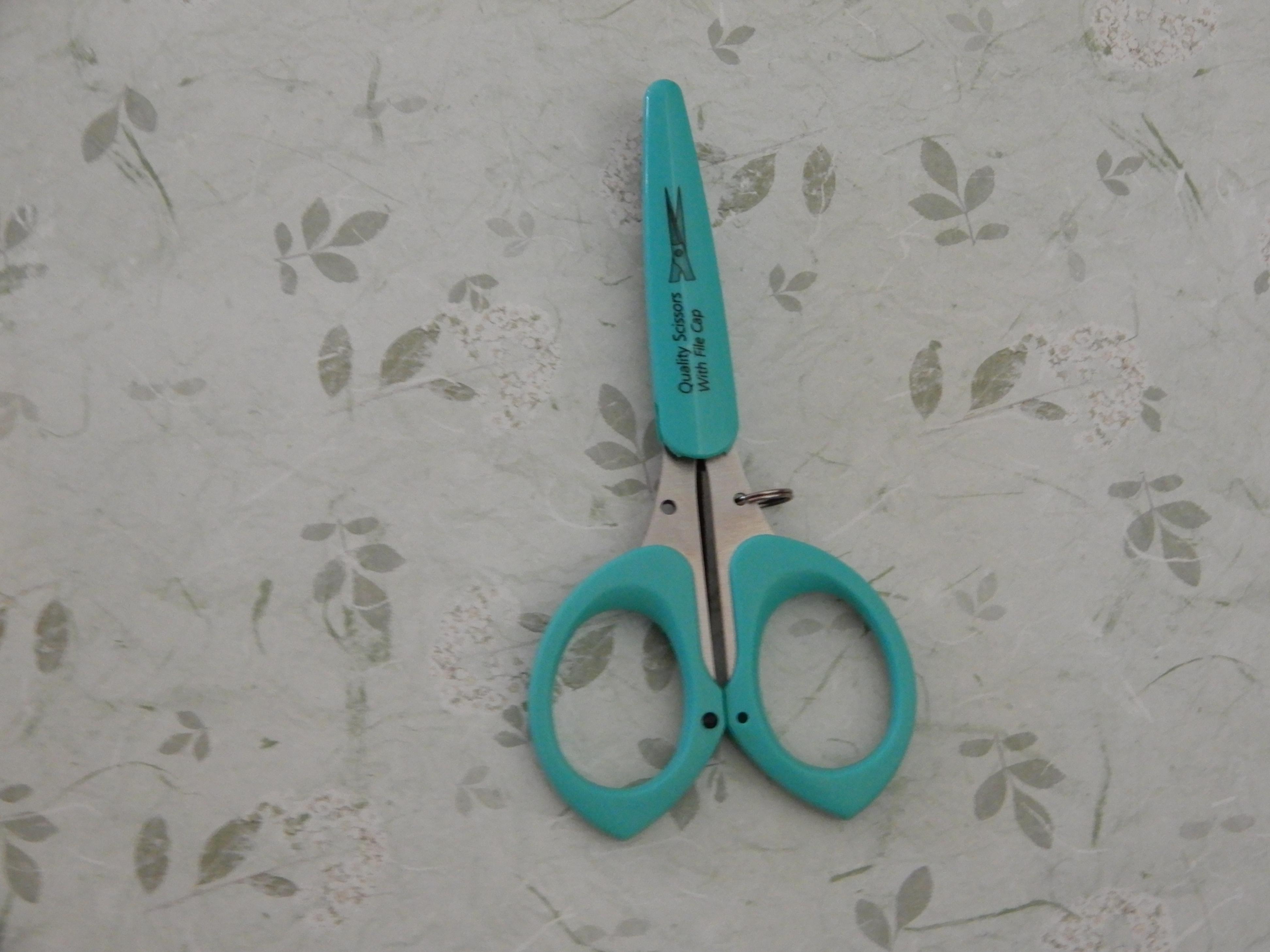 Blue Scissors With File Cap