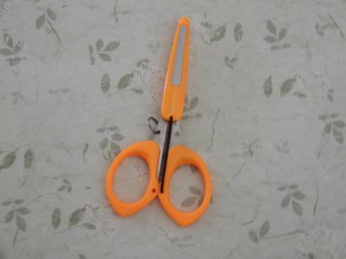 File Cap Scissors 1